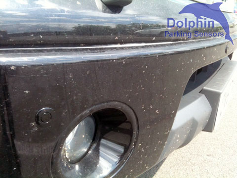 sensors in bumper